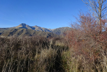 Vista al NO desde la collada de Trases, con el Montsent de Pallars.