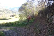 Continuamos hacia la izquierda, dejando a la derecha el camino que baja hacia Rialp.