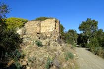 Ruinas de Can Merina.