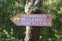 Camino de la necrópolis megalítica de la sierra de Cals.