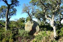 Pedra dreta de les Tres Finques.