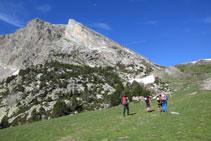 Tramo herboso de las pistas de esquí de Vallter 2000.