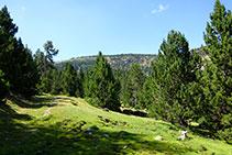 El sendero, a veces desdibujado, enfila hacia el NO, entre el lomo y el fondo del valle.