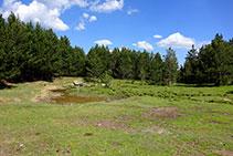 Tiempo atrás el lago de Davall ocupaba más volumen que el actual.