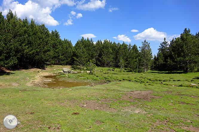 El pequeño lago de Davall en Comes de Rubió 1