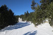 """Pista de esquí nórdico conocida como la """"Autopista""""."""