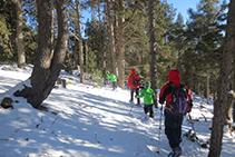 Sendero que nos devuelve a la base de la estación de esquí nórdico de Lles de Cerdaña.