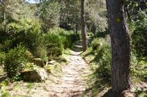 Camino de la Canal de la Tossa.