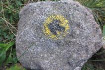 Señal de pintura amarilla y negro en una roca.