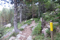 A punto de llegar al Planell de Llubriqueto.