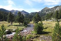 Agradable zona para descansar y disfrutar del entorno.