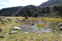 Zona pantanosa.