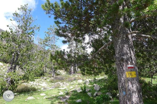 Estanys de la Pera desde Pollineres 1