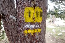 Seguimos el sendero 119 de la red de senderos de la Cerdaña.