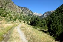 Empezamos la ruta caminando por una pista forestal muy cómoda siguiendo el GR 11-20.
