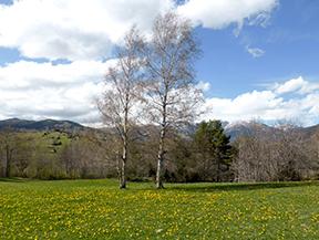 La fuente de las Dous per los llanos de Espinalba y de Abella