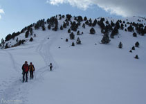 A más de 2.000 metros de altitud encontramos pocos árboles y abundan los prados alpinos.