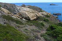 Esquistos (de color gris) y pegmatitas (blancas y anaranjadas) en el Parque Natural del Cabo de Creus.