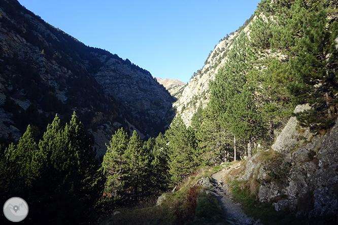 GR 11 - Etapa 10: Santuario de Nuria - Planoles 1