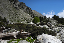 Zona de rocas camino del lago de la Nou.