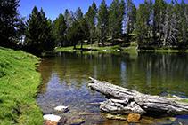 Aguas cristalinas en el lago de la Nou.