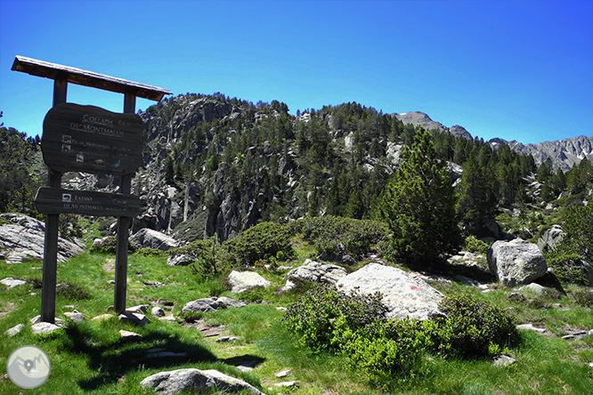 GRP - Etapa 3: Refugio de l
