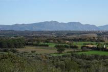 Sierra de la Albera desde el Montpedrós.