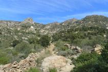Avanzamos por un terreno rocoso.