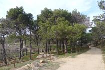 Llegamos al área de recreo del Mas Ventós.