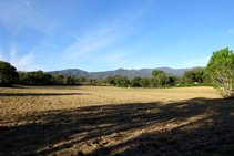 Campos de la Verneda.