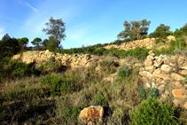 Bancales de piedra seca.