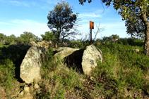 Dolmen de la Verneda.