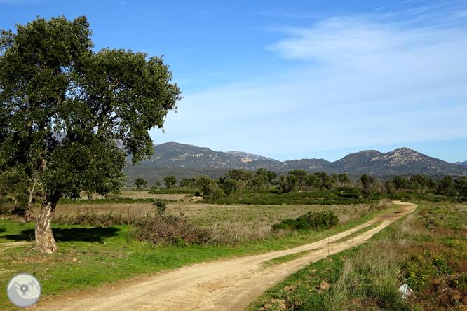 Itinerario megalítico de Capmany 1