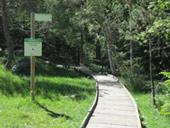 Itinerario adaptado del puente de la Gorga