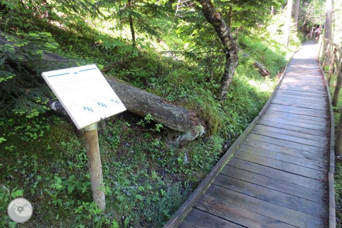 Itinerario adaptado del puente de la Gorga 1