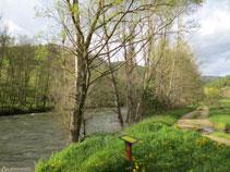 Avanzamos siempre en paralelo al río.
