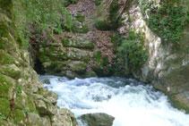 El agua emerge por entre las rocas de la montaña.