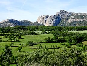 La Geganta Adormida, itinerario hist�rico por el Pla de Corts