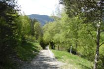 Llegando a la carretera de la Gonarda.