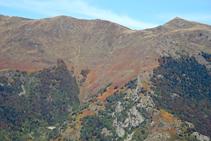 Las tonalidades ocres del helecho en las montañas del Valle de Arán.