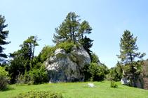 La Roca del Catllaràs.