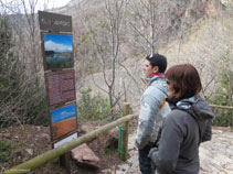 Paneles informativos a lo largo del camino que nos hablan de la vegetación y de la fauna de la zona.
