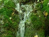 Las fuentes de Peramola (��Cam� de les Fonts��)