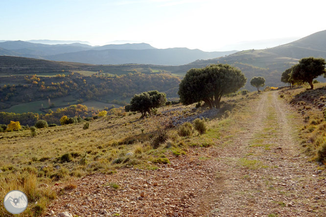 Sierra de Sant Gervàs: el Portús y la Avedoga d