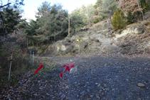 Palo indicador R172, Collada Camp de Pinyons.