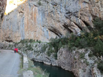 La carretera junto al río que va serpenteando por el desfiladero de Collegats.