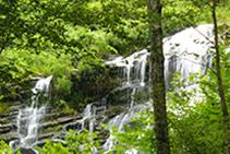 El agua, presente durante todo el recorrido.