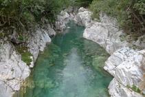 Río Ara desde el puente de Oncins (aguas arriba).