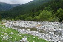El río Ara.