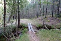 Camino al barranco de Els Forcats.